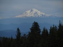 As we got back to Timberline Trail we had a nice view of Mt. Adams.