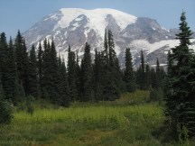 One of many scenic views of Rainier from this trail.