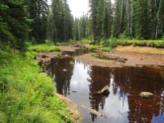 Rush Creek Pond