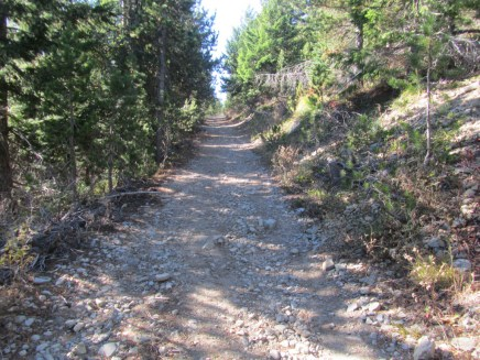 An old jeep road lead up to the Bonney Butte an old fire look out site.