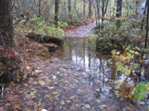 The wet day left a few section of trail underwater.