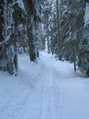 The PCT Trail had good snow conditions