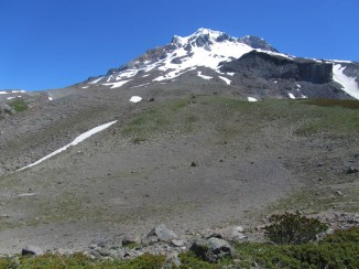 The extended Paradise Park Trail ends at this spot. Looking up to Mt. Hood and Mississippi Head Wall.