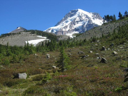 Last look at Mt. Hood and Barrette Spur before heading into the trees.