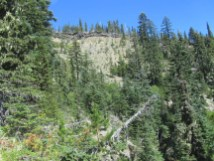 A view from the trail of the rim we are heading to. These switch backs go through some great old growth Hemlock.