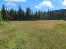 View across Second Meadow with East Crater in the distances.