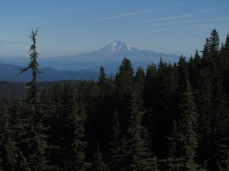 You come around this corner on the trail and you get a view of Adams, Rainier and St. Helens.