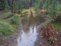 Small trail pond now, should be a large pond in another week.