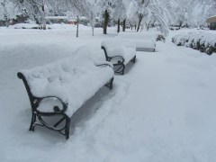 Snow covered benches.