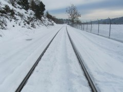 A ruff trail had been put in along the tracks.