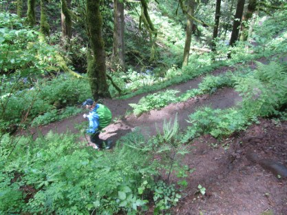 Audrey on switchbacks heading down to Wahkeena Creek.