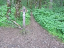 Start of the Nesmith Point trail.