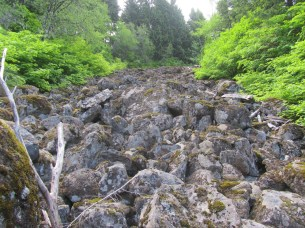 The only boulder field the trail crosses.