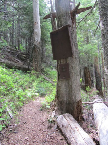 Old Forest Service sign board is the last land mark before the flats.