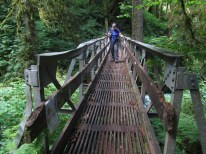 Lori on the bridge. This bridge was damaged by a falling tree and you now have to cross it one person at a time.