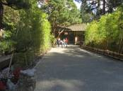 JapaneseGarden_IMG_4686