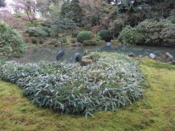 JapaneseGarden_IMG_4714