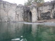 Zoo_DSCF1494
