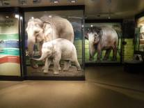 Zoo_DSCF1519