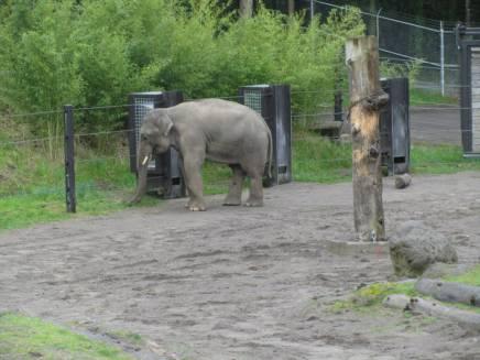 Zoo_IMG_4900