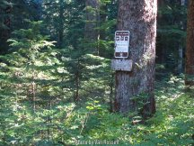 The trail sign was about 25 ft from where the trail actually was.