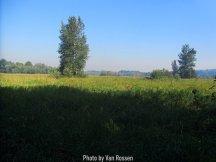 Ridgefield_IMG_1224