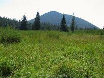 Lone Butte from Lone Butte Meadow.