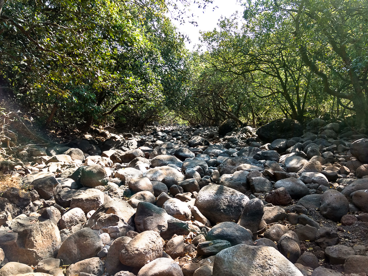 We spent our time walking on this dry riverbed