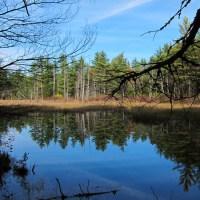 Quabbin Reflections