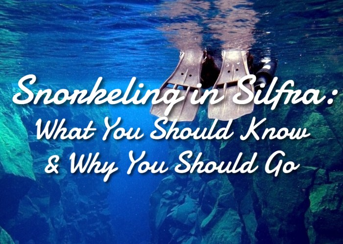 Snorkeling in Silfra: What You Should Know & Why You Should Go