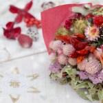 クリスマスに花のプレゼントでおすすめなもの&花言葉をご紹介