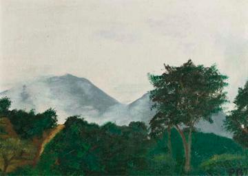 Uitzicht vanaf een heuvel een uur buiten Khatmandu, Nepal: misty mountains