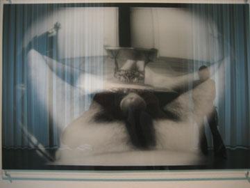documenta-shock1.jpg