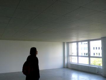 houten-plafond
