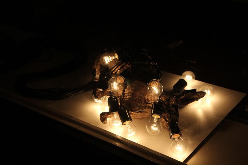 TransLumen — Lichtkunst in de Transvaal