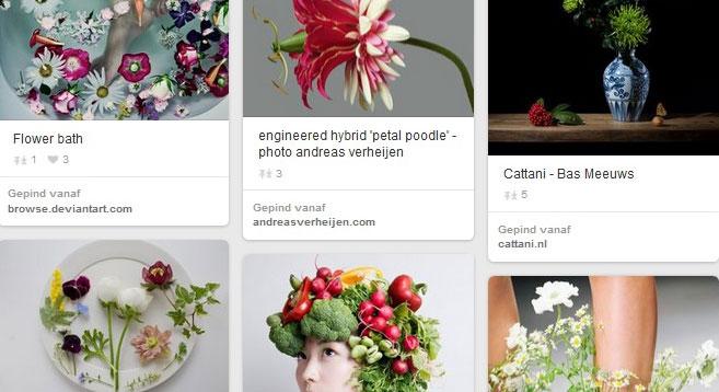 Hoe maak je een digitaal moodboard of collage