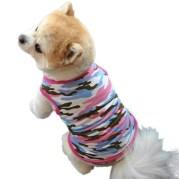 Dog Sweater Crochet Pattern Small Dog Apparel Extra Sweater Knitting Patterns Waterproof Coats
