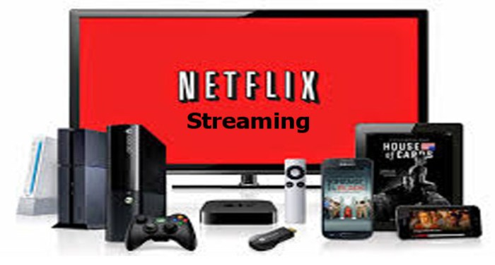 Netflix Streaming - How to Stream With Netflix