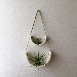Beautiful Plant Decors For Your House 04