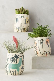 Beautiful Plant Decors For Your House 17