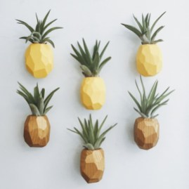 Beautiful Plant Decors For Your House 21