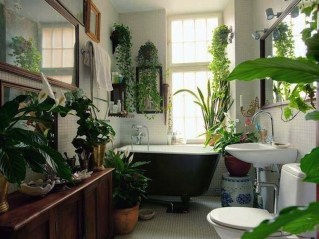 Beautiful Plant Decors For Your House 28