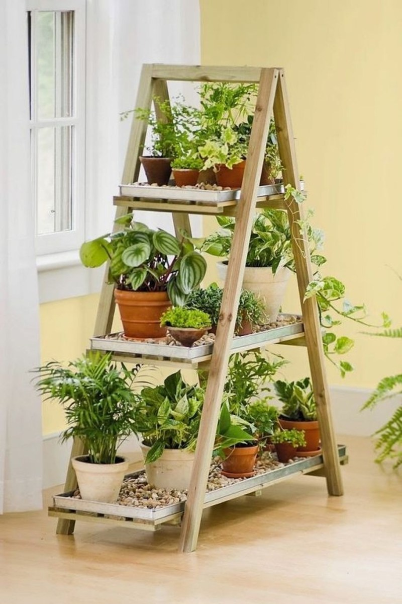 Beautiful Plant Decors For Your House 37