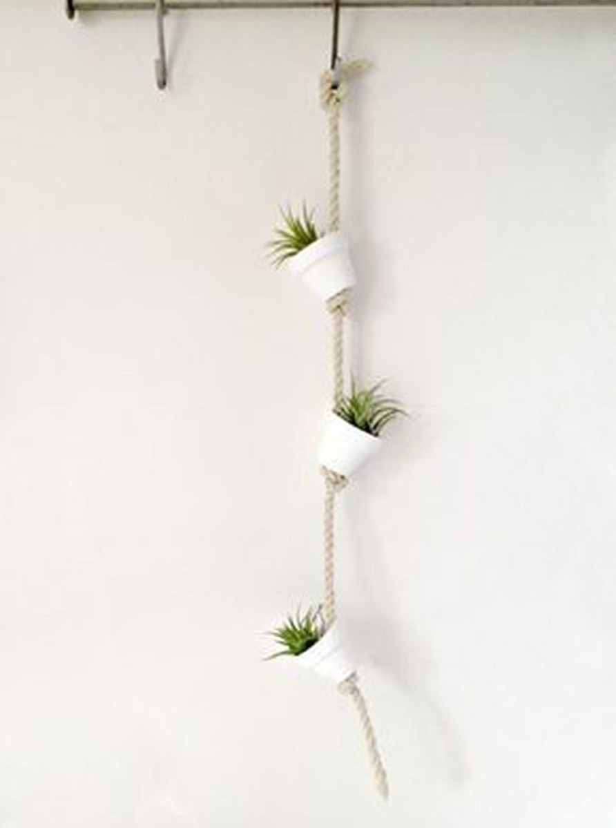 Beautiful Plant Decors For Your House 38
