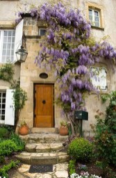 Beautiful Facades With Vines And Climbers 05
