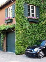 Beautiful Facades With Vines And Climbers 15
