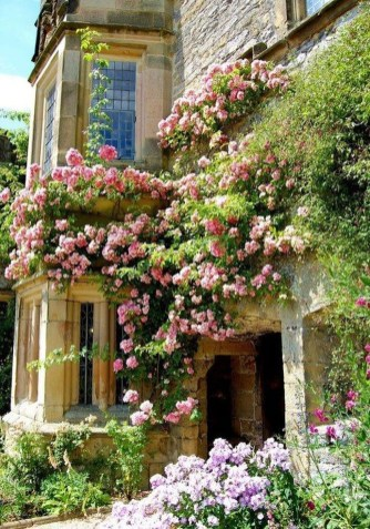 Beautiful Facades With Vines And Climbers 50