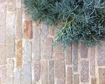 Beautiful Garden Flooring Ideas 42