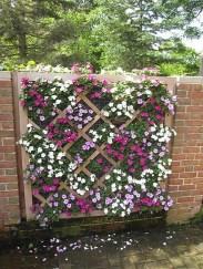 Small Garden Ideas 23