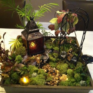 Magnificient Diy Fairy Garden Ideas With Plants 17
